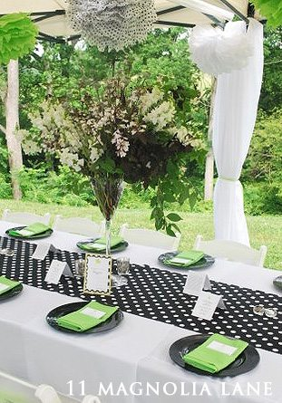 black white green baby shower