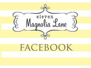 facebook button 2