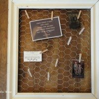 Chicken wire frame 002