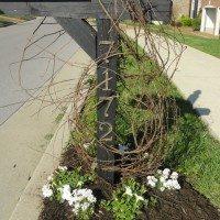 Mailbox Redo–Perennials & Jasmine on a Rustic Grapevine Trellis