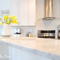 Spring Kitchen {with pops of yellow}