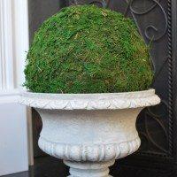 moss sphere1