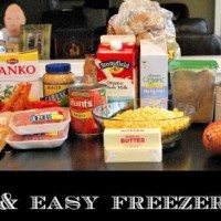 6-fast-freezer-meals-24-servings