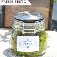 fresh basil pesto MARKED