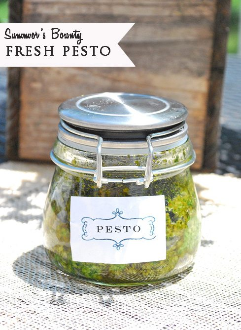 Summer's Bounty~Fresh Basil Pesto
