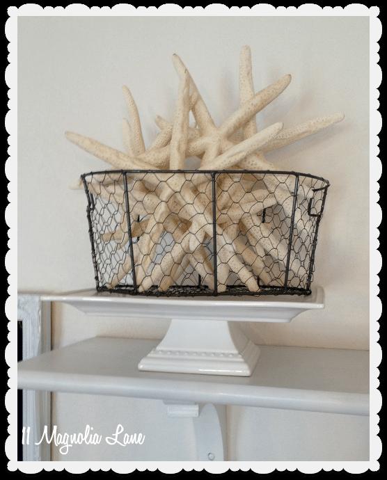 starfish in chicken wire basket