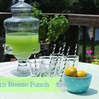 southern breeze southern punch