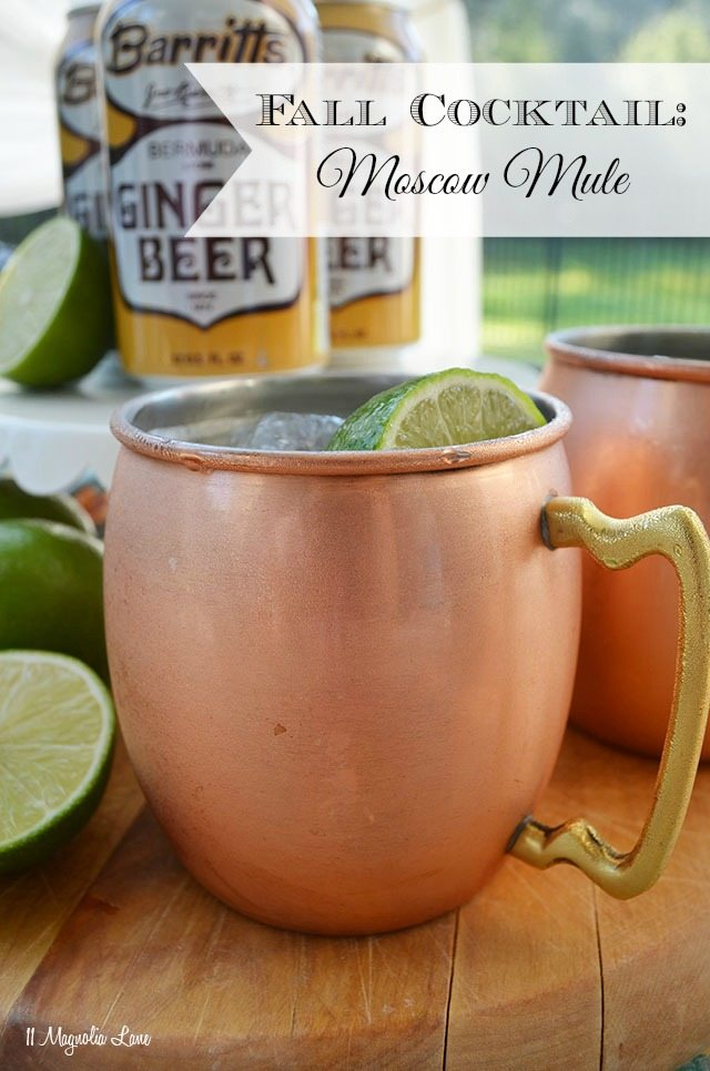Fall Cocktail Recipe: The Moscow Mule | 11 Magnolia Lane