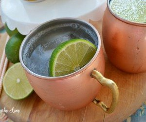 Moscow Mule Cocktail Recipe | 11 Magnolia Lane
