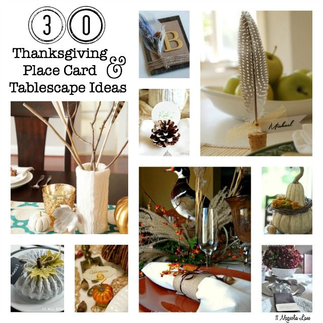 30 DIY Thanksgiving Placecard & Tablescape Ideas