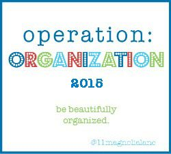 operation-organization2015 | Jewelry Organizer @ Magnolia Lane featured by popular Dallas style blogger, Style Your Senses