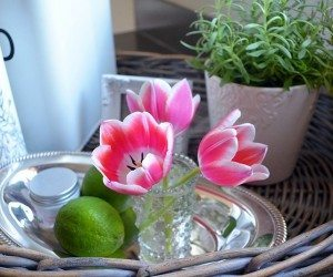 "Easy ways to make your home ""green"" | 11 Magnolia Lane"
