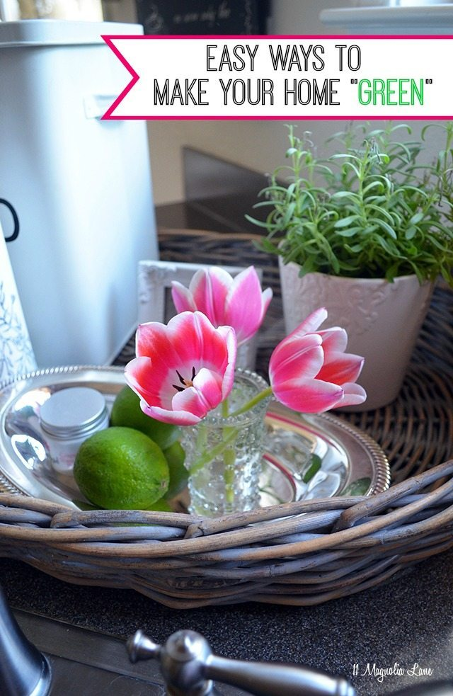 Easy ways to make your home a green home| 11 Magnolia Lane