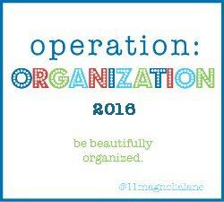 operation-organization2016-250x225