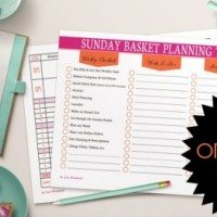 Operation: Organization–Lisa from Organize 365