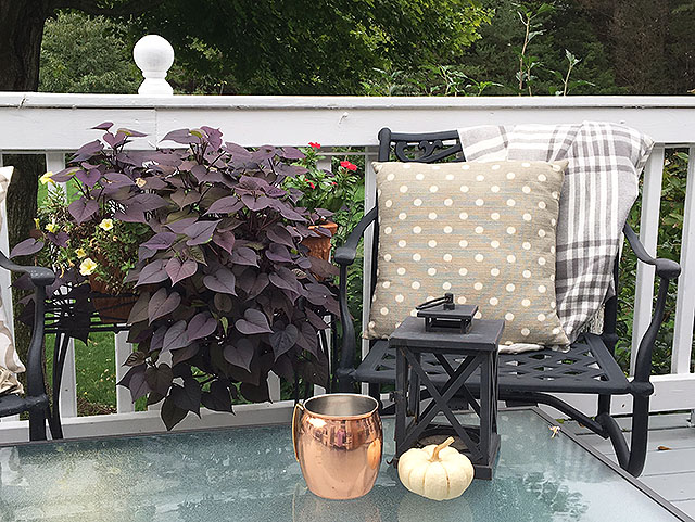 fall-on-back-deck