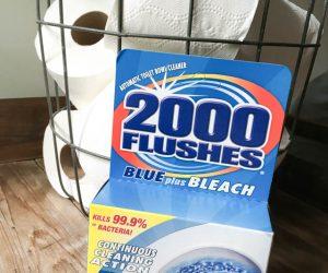 2000 Flushes