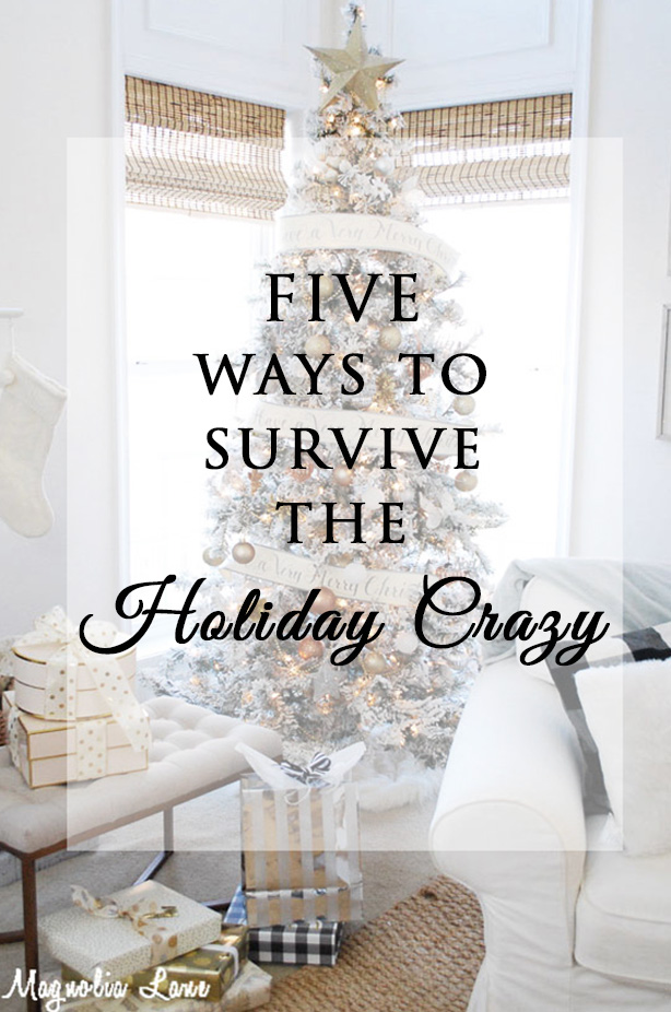 Our Five Best Tips to Tame the Holiday Crazy
